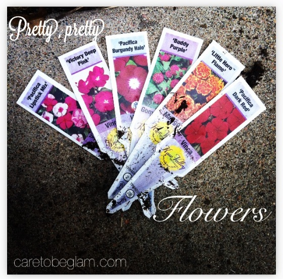 Planting a Garden...flower tags